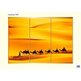 шкаф-купе (фотопечать на стекле)
